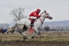 todorovden-kushii-aprilovo- 54