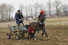 todorovden-kushii-aprilovo- 61