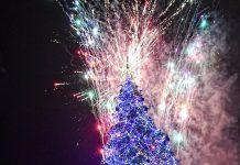 елхите на таланта Коледна елха в София
